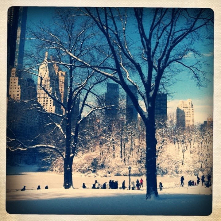Snow in Central Park_2