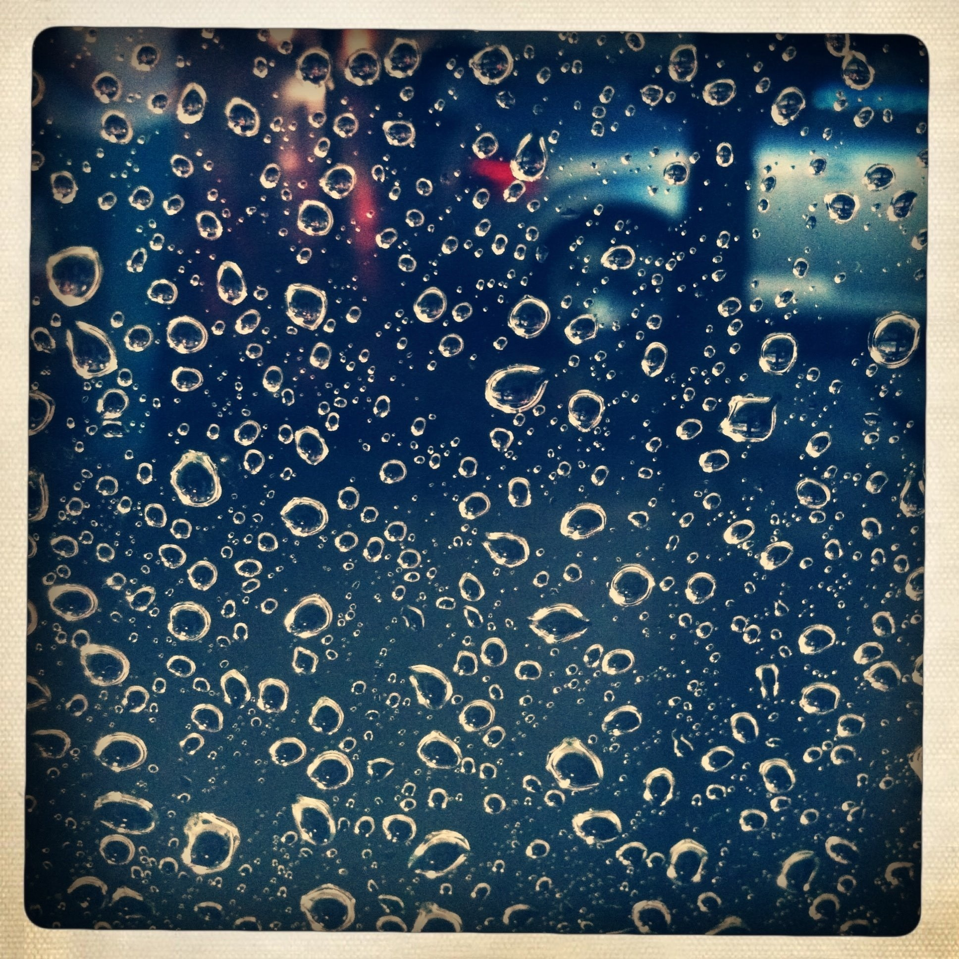 _Raindrops__Photographer - Carla Ercole